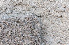 Выдержанная текстура стены Стоковые Фото