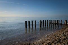 Выдержанные деревянные столбы моря стоковые изображения