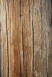 выдержанный телефон полюса Стоковые Изображения RF