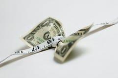 выжимка доллара Стоковое Изображение RF