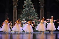 Вызов актеров на сцену Щелкунчика балета девушки- снега стоковые изображения rf