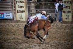 Выигрывая езда Стоковое Фото