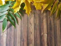 выйдите скидка ноябрь рамки деревянной доски Стоковые Фотографии RF