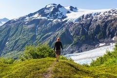 выйдите ледник Стоковые Фото