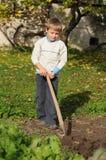 Выкапывая почва стоковая фотография rf