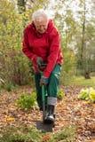 выкапывая сад Стоковые Фото