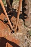 выкапывая столб отверстий Стоковая Фотография RF