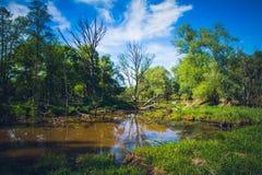 Выключение меандра реки стоковое фото rf