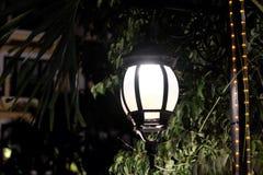 Выкованный винтажный фонарик освещает листья дерева Яркий свет исходя от уличного фонаря стоковая фотография rf