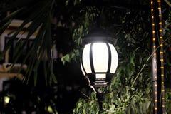 Выкованный винтажный фонарик освещает листья дерева Яркий свет исходя от уличного фонаря стоковые фотографии rf