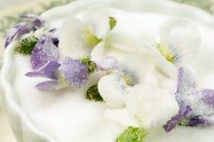 выкристаллизовыванные фиолеты Стоковые Фотографии RF