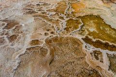 Выкристаллизовыванный углекислый кальций на Mammoth Hot Springs Стоковая Фотография
