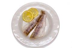 2 выкружки сырых рыб в белой плите Стоковые Изображения RF