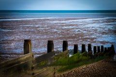 Выключатели моря Стоковое Изображение