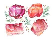 Вылеченное мясо с розмариновым маслом и специей Стоковая Фотография