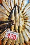 вылеченные сардины стоковые фотографии rf