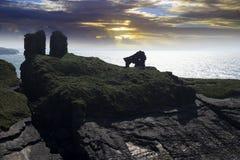 Вылижите замок в Керри графства Стоковые Изображения RF
