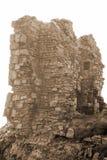 Вылижите замок в sepia Стоковое Изображение