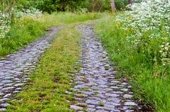 Вымощающ, paver, мостоваая, булыжник, вымощая камни, стоковое изображение rf