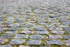 Вымощая камень мшистый на краях Стоковые Фотографии RF