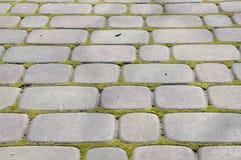 Вымощая камень, текстура стоковое фото
