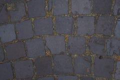 Вымощая камень Стоковые Фотографии RF