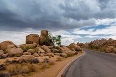 Вымощенная дорога на национальном парке дерева Иешуа Стоковые Изображения