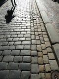Вымощенная дорога с человеческой тенью Стоковая Фотография RF