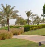 Вымощенная дорожка с пальмами, курорт гостиницы Anantara, господин Baniyas Остров Стоковое фото RF