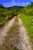 вымощенная сельская ООН тропки Стоковое фото RF