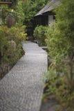 Вымощенный каменный путь к дому окруженному тропическим vegetatio Стоковые Изображения