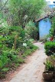 Путь сада в сельском Мексике стоковое фото rf