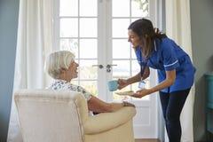 Вынянчите чай и печенья сервировки к старшей женщине дома стоковые изображения rf
