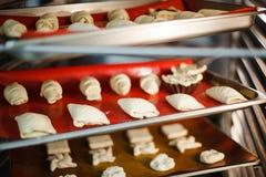 выпечка десерта на подносах выпечки в печи Стоковые Изображения RF