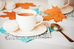 Выпивать чая осени Стоковая Фотография RF