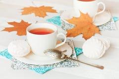 Выпивать чая осени Стоковые Изображения RF