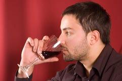 выпивая вино Стоковое фото RF