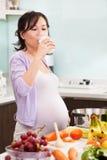 выпивая молоко повелительницы супоросое Стоковое Изображение