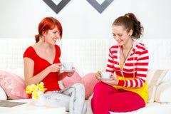 выпивая подруги сидя детеныши чая софы Стоковое Фото