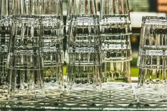 выпивая стекла Стоковая Фотография