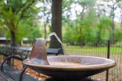 Выпивая фонтан cobber Стоковое фото RF