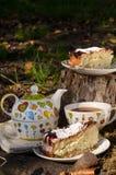 Выпивая чай с печеньем 2 Стоковая Фотография RF