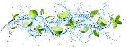 Выплеск воды с листьями мяты Стоковые Изображения RF