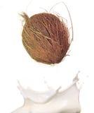 выплеск молока кокоса стоковые изображения rf