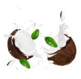 выплеск молока кокосов Стоковые Изображения