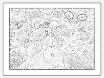 выплеск цветков Стоковая Фотография RF
