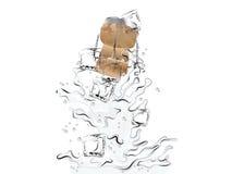 Выплеск Шампани Стоковое Изображение