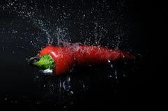 выплеск chili Стоковая Фотография RF