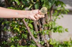 Выплеск воды воздушного шара Стоковые Изображения RF