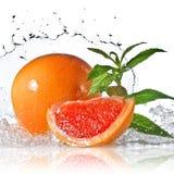 Выплеск воды на грейпфруте при изолированная мята стоковое изображение